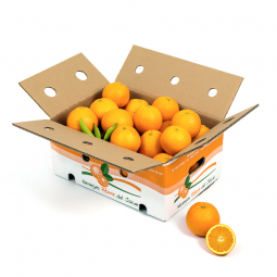 Table Oranges 10 Kg