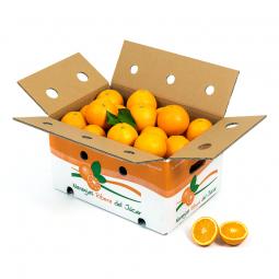 Table Oranges 15 Kg