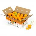 Juice Oranges 10 Kg