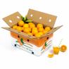 Mixta Naranjas Mesa y Zumo 10 Kg