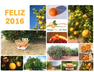 felicitacion-collage-año-nuevo-naranjas-ribera-del-jucar-2016