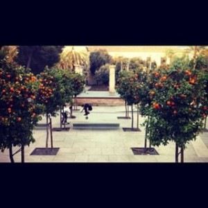 foto-naranjas-skateboarding-valencia-oranges