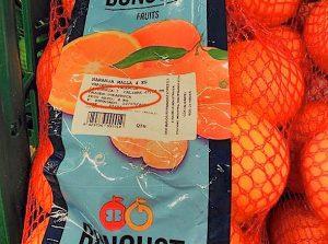 comprar-naranjas-en-verano-importadas-de-sudafrica